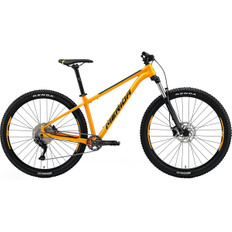 Big Trail 200 2021 Orange / Black
