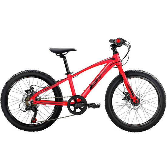 Bicicleta de montaña BH Expert Junior 20